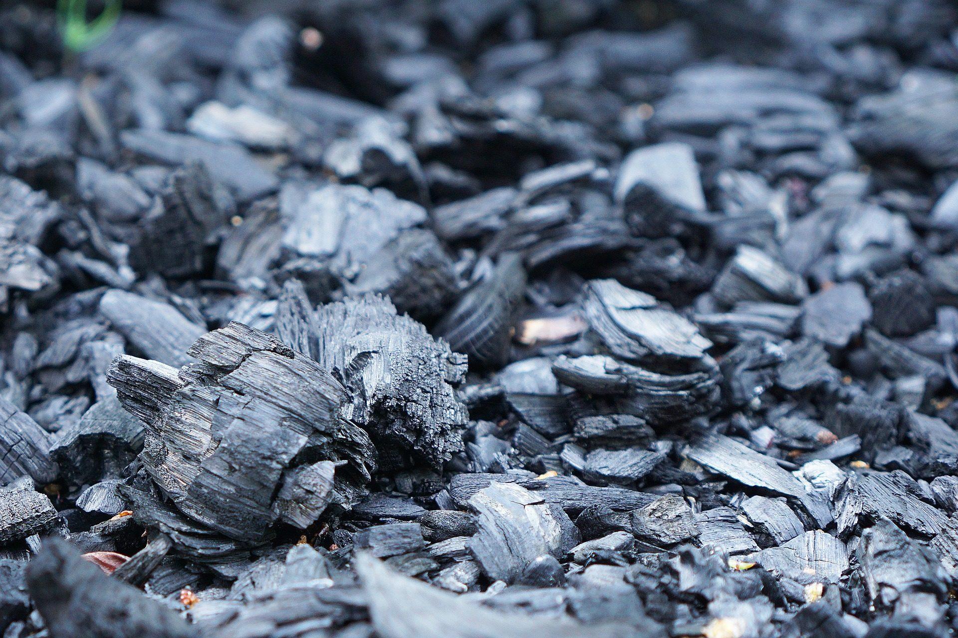 Mest Voor Tuin : Wat doe jij met verbrand hout uit de kachel? gebruik het in de tuin!