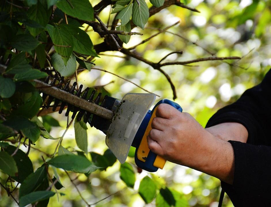 werken in de tuin (002)
